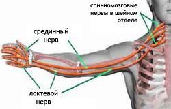 Грудной остеохондроз при беременности лечение